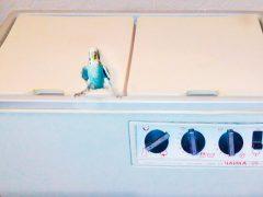Стиральная машина и попугай